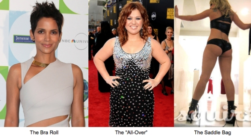 Halle Berry : Kelly Clarkson : Lady Gaga : Liposuction : saddle bags : bra roll