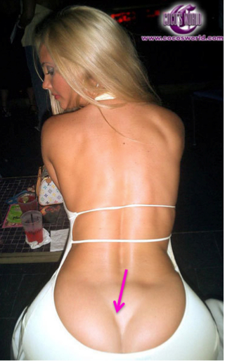 nicole austin booty, coco's booty, ice T's wife coco, celebrity booty, butt implants, celebrity plastic surgery, celebrity cosmetic surgery, celebrity gossip